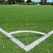 Kelly Park field lines corner