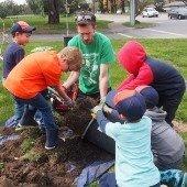Plantando Arboles en la Escuela Belle Haven