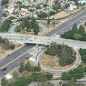 Tree Removal Scheduled at U.S. Route 101/Willow Interchange