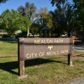 Adult softball swings to a close as Nealon renovations start