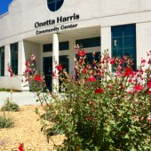 New Landscape at the Onetta Harris Community Center