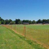 Burgess Park field reopening