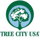 Arbor Day Foundation names Menlo Park Tree City USA, Growth Award Winner