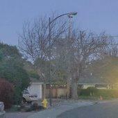 Suburban Park street lighting outage