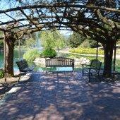 Sharon Park pond cleaning underway