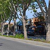 santa cruz avenue businesses