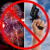 new years reminder: no fireworks or firearms