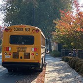 school bus parked next to sidewalk and fall tree leaves