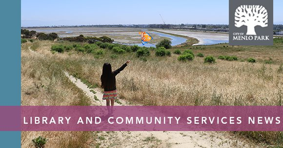 Library and Community Services News banner image, child flying kite