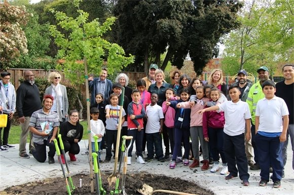 Tree Planting Community Meeting