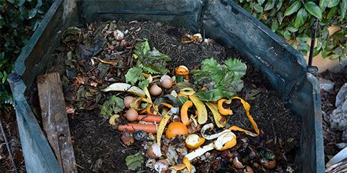 Blog--backyard-compost-with-common-food-scrap-items